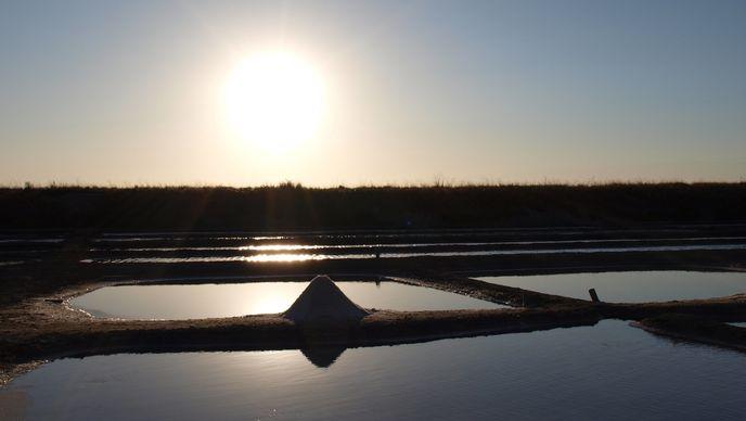 Marais Salant à Loix en Ré